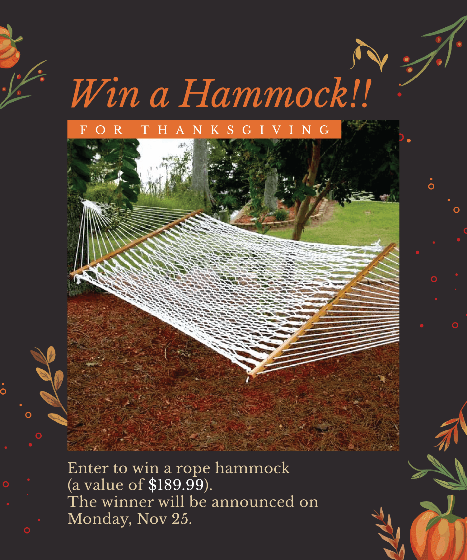 Thanksgiving Giveaway 2019 - Win a Hammock [a $189 value] Giveaway Image