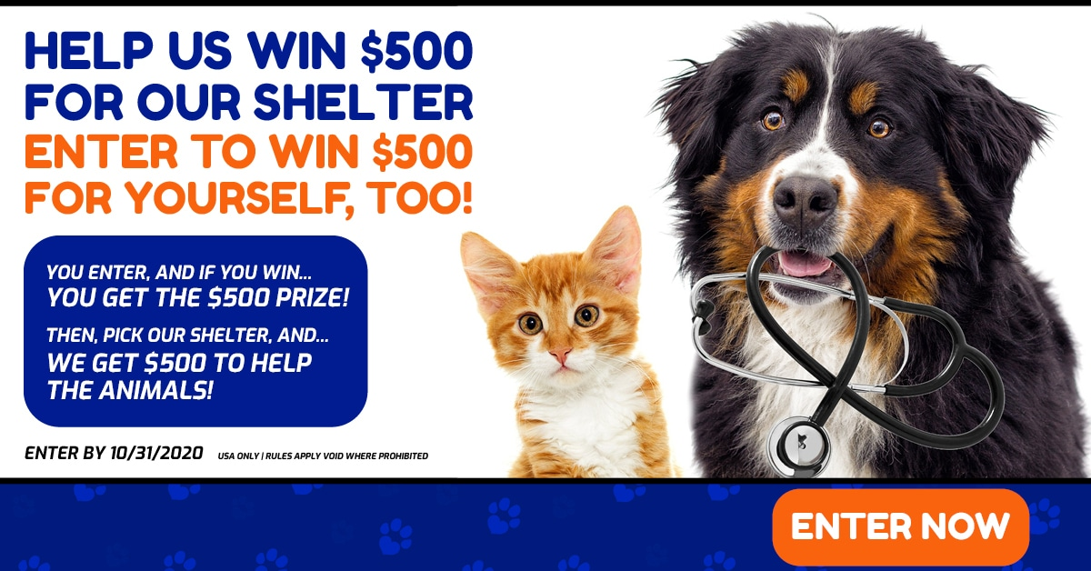 Win $500 for you, $500 for an animal shlelter of your choice!  10/31/20 Giveaway Image