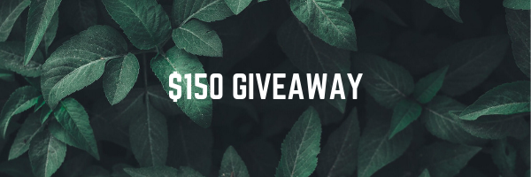 $150 Elevated Faith Gift Card Giveaway Giveaway Image