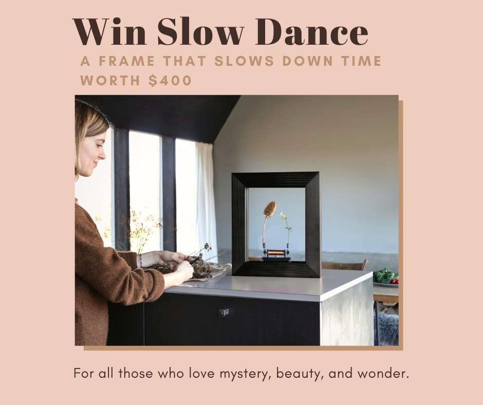 Win Slow Dance � A Frame that Slows Down Time. Worth $400 from Gadget User Giveaway Image