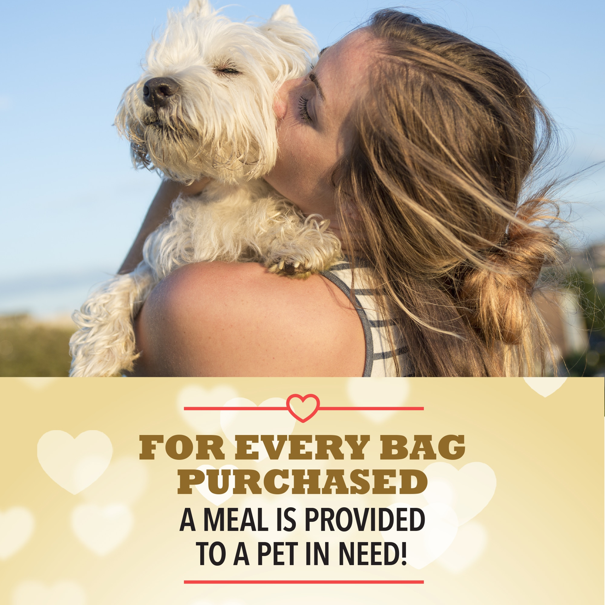 Enter to win 3 Months of Kibble for Pup and a Rescue. $360 Value. 4 Monthly Winners! Giveaway Image