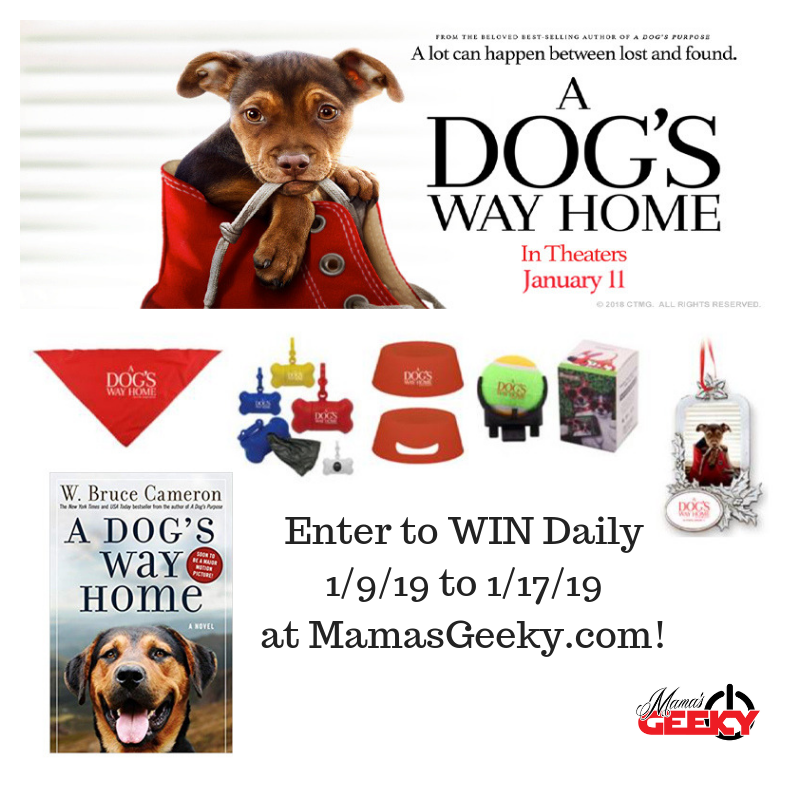 A Dog's Way Home Prize Pack Giveaway Giveaway Image