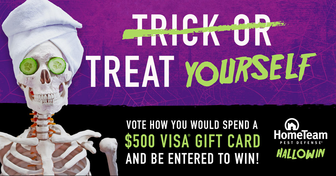 Win $500 Visa Gift card! 10 more will win $50 gift card. Giveaway Image