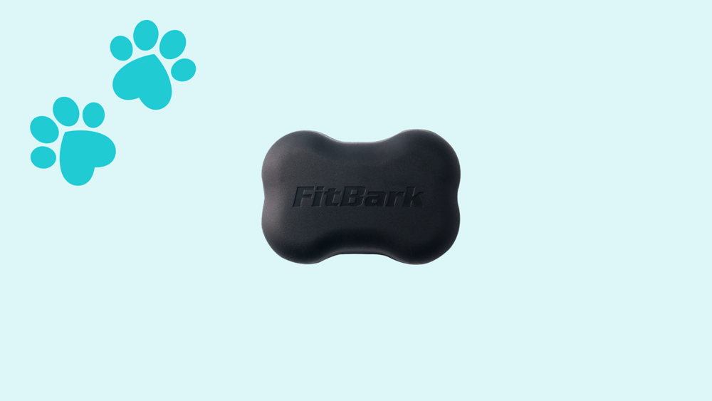 FitBark 2 Giveaway! Gagdet for your pet ???? Giveaway Image