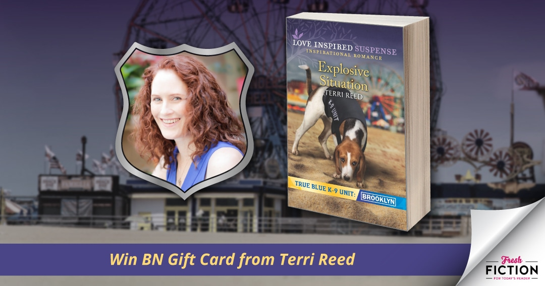 Celebrating a New Release with Terri Reed: Win Barnes & Noble gift card