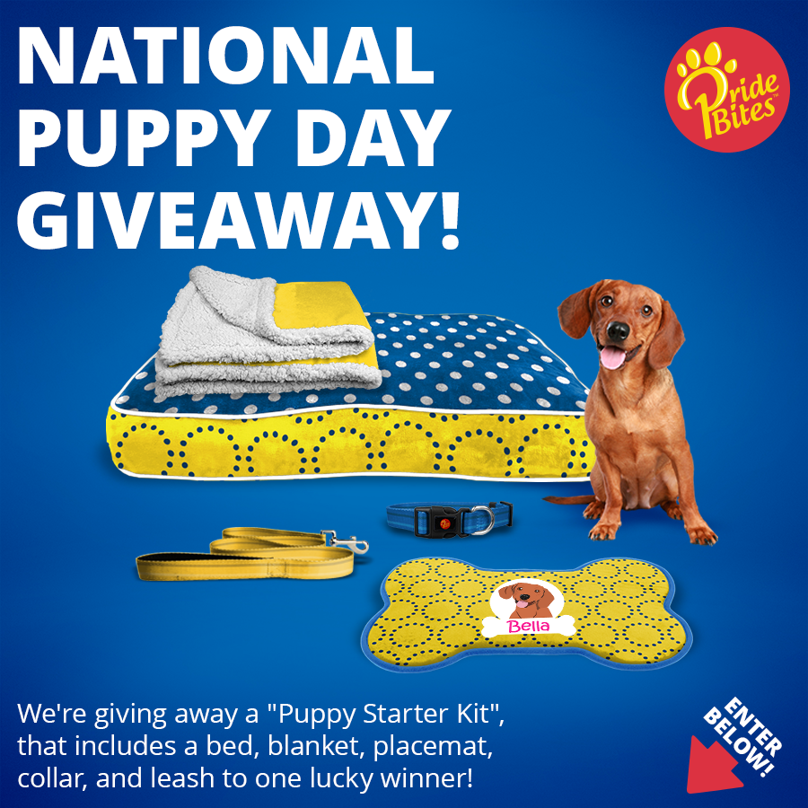 National Puppy Day Giveaway!