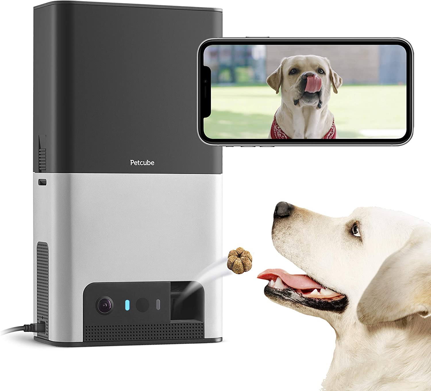 Petcube Bites 2 Wi-Fi Pet Camera with Treat Dispenser Contest Giveaway Giveaway Image