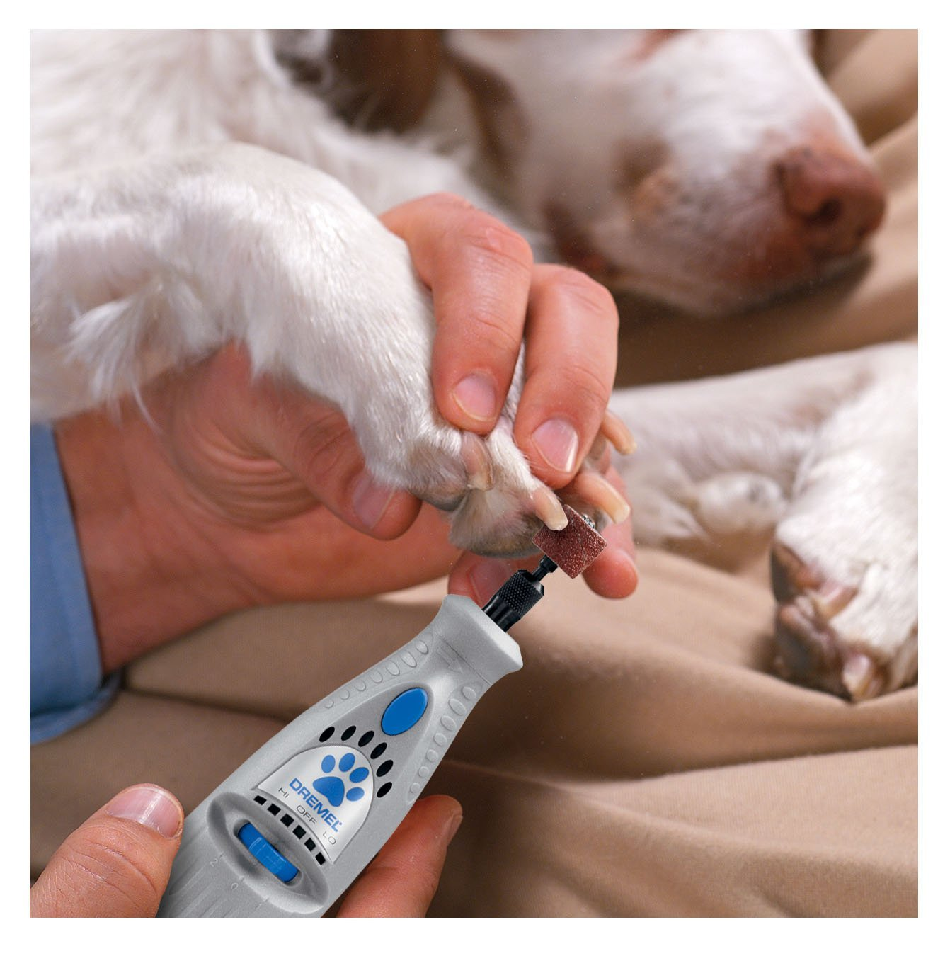 Enter for a chance to win the Dremel 7300-PT 4.8V Pet Nail Grooming Tool Giveaway Image