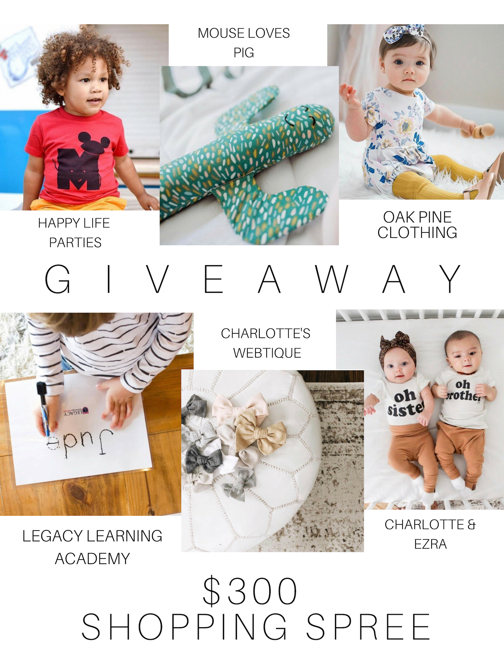 Enter for a chance to win a $300 Shopping Spree at six participating online stores! Giveaway Image